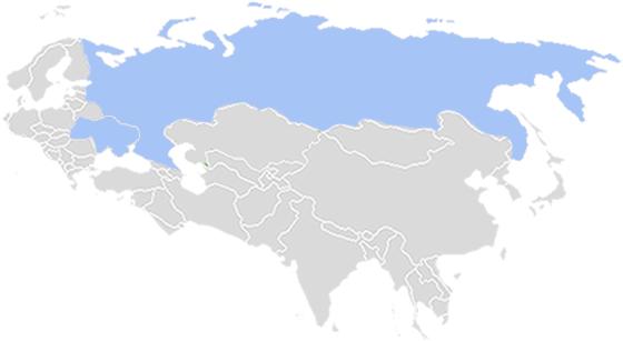俄罗斯和乌克兰